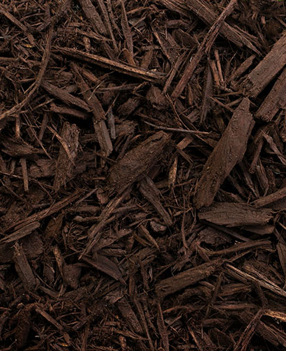 Chocolate mulch, brown pine mulch