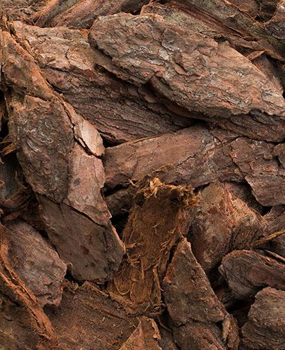 large pine bark nuggets